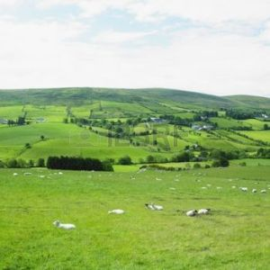 If you want to exert snobbery say: Although the pastures of (insert name of state) are serene and green, it's not Ireland.