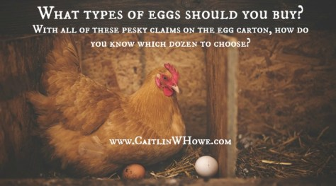What do all those labels mean on your eggs-2