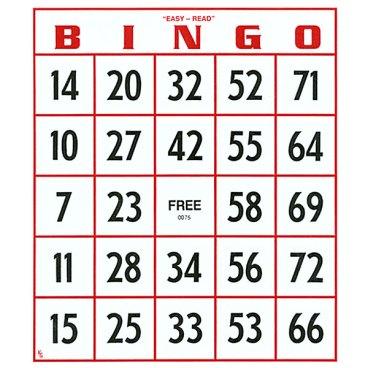 0011634-ez-to-read-bingo-cards-set-of-25