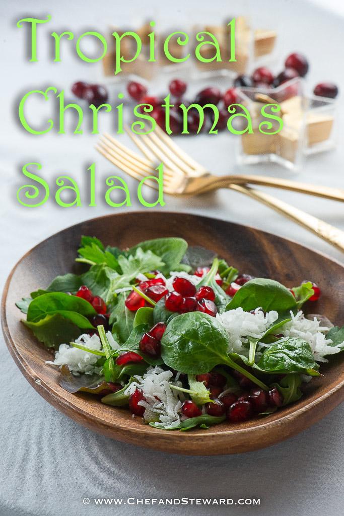 Christmas Salad Recipes.Tropical Christmas Salad