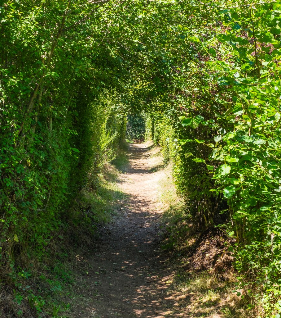 St-Julien-Aux-Bois Xaintrie Medieval Farm Correze France