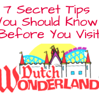 7 Secret Tips You Should Know Before Your Dutch Wonderland Visit