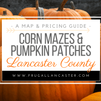 Corn Mazes and Pumpkin Patches in Lancaster County