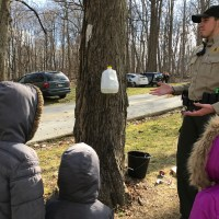 Maple Sugaring at Lancaster County Central Park