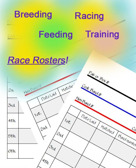 racing pigeon record cards