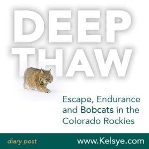 deep_thaw