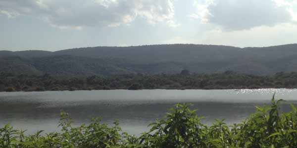 sariska 10 Family Weekend Getaways near Delhi for the Holiday Season