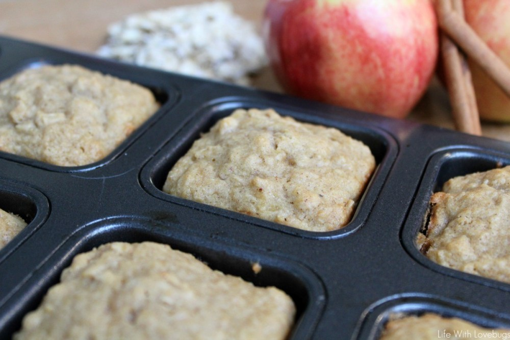Spiced Applesauce and Oatmeal Muffins