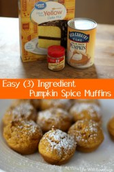 Easy 3 Ingredient Pumpkin Spice Muffins