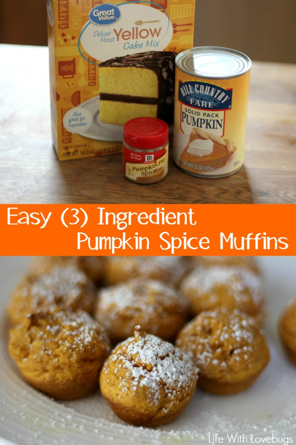Easy 3 Ingredient Pumpkin Spice Muffins