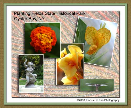 Planting Fields State Park