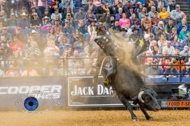 Cody Teel competing in the PBR Saint Louis Invitational. Photo by Sean Derrick/Thyrd Eye Photography.