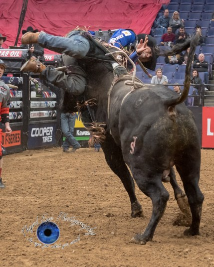 Eduardo Aparecido competing in the PBR Saint Louis Invitational. Photo by Sean Derrick/Thyrd Eye Photography.