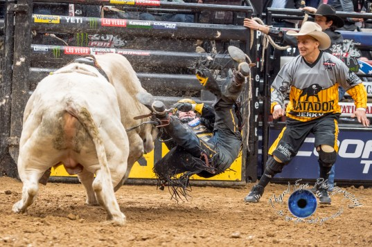 Jess Lockwood competing in the PBR Saint Louis Invitational. Photo by Sean Derrick/Thyrd Eye Photography.