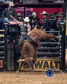 Paulo Ferreira Lima competing in the PBR Saint Louis Invitational. Photo by Sean Derrick/Thyrd Eye Photography.