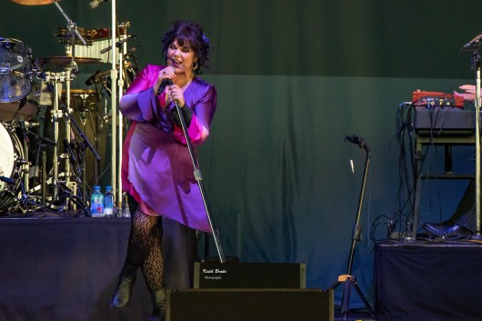 Ann Wilson performing at Hollywood Casino Amphitheatre Saturday. Photo by Keith Brake Photography.