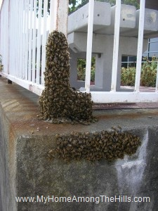 Post office swarm