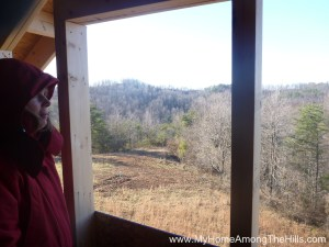 Window view from our small cabin in WV