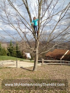 Girl climbing a tree!