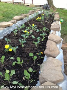 Raised bed garden from railroad ties