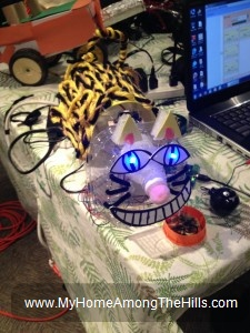 Cheshire cat robot