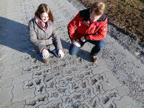 Kombiweg Stuerzenhardt
