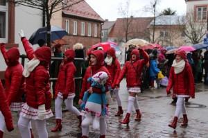 Mudau: Rosenmontagszug 2016