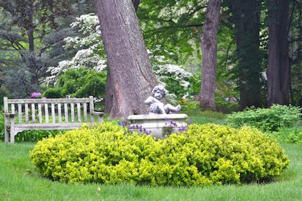 NSL143_Civic Garden_Cherub