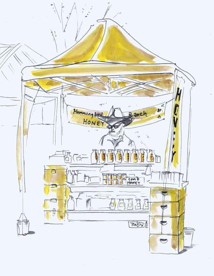 NSL_151_Humming Bird Sketch