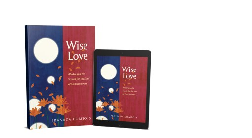 A Brits' Travelogue Review of Award-Winning Wise-Love