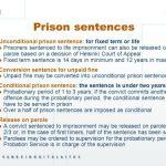 dutch-prison-sentence-rules