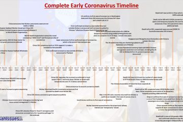 A Story of Action: The Complete Early Coronavirus Timeline