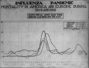 Spanish Flu Pandemic of 1918 1919 deaths per week
