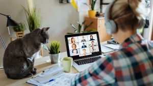 work from home women with cat and laptop computer