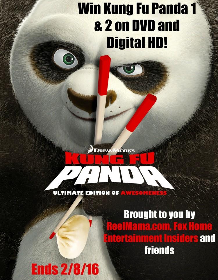 Kung Fu Panda DVD Giveaway