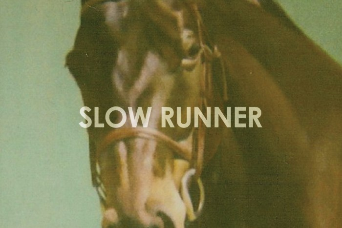 Slow Runner Sings Fight Songs