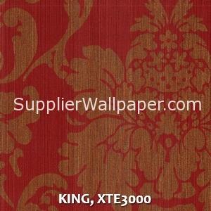 KING, XTE3000