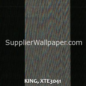 KING, XTE3041
