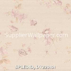 SPLEDID, DY220101