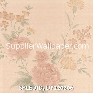 SPLEDID, DY220206