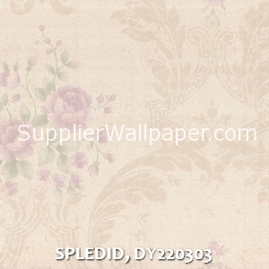 SPLEDID, DY220303