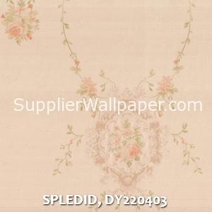 SPLEDID, DY220403