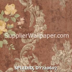 SPLEDID, DY220607