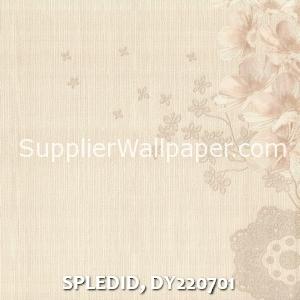 SPLEDID, DY220701