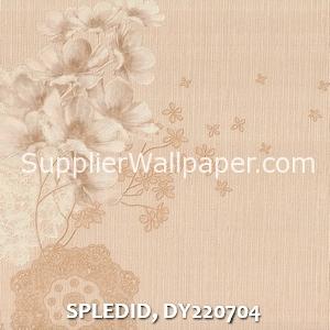 SPLEDID, DY220704