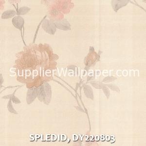 SPLEDID, DY220803