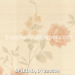 SPLEDID, DY220804