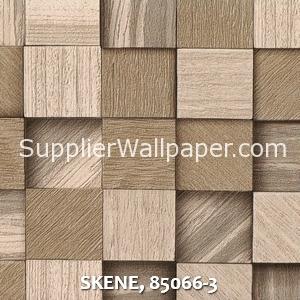 SKENE, 85066-3