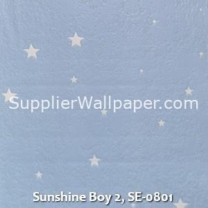 Sunshine Boy 2, SE-0801