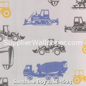 Sunshine Boy 2, SE-1604